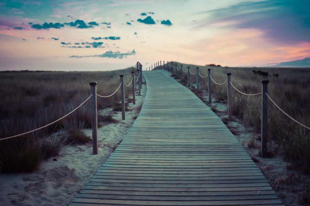 bridge, walkway, path